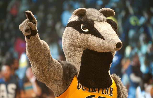 What are my chances of getting into UC Irvine?